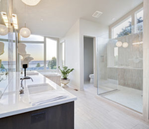 Clean bathroom - better IAQ - better Health